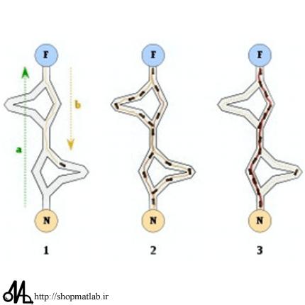 112hj1 آموزش الگوریتم کلونی مورچگان به همراه حل مسئله فروشنده دوره گرد با ACO
