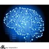 بهینه سازی شبکه عصبی با الگوریتم فاخته