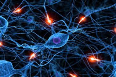 download 9 شبکه عصبی خاکستری بهبود یافته با الگوریتم ژنتیک