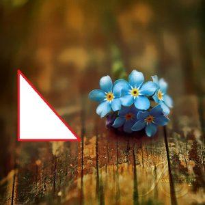 a nature photography 4 300x300 پردازش تصویر در متلب
