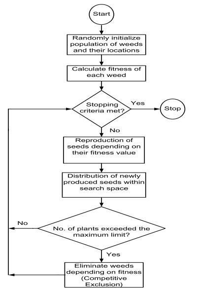۴ الگوریتم بهینه سازی علف های هرز